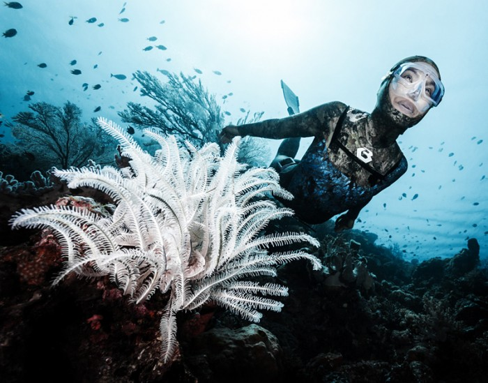 Ai Futaki: Wakatobi Dive Resort © by MarcoFierli