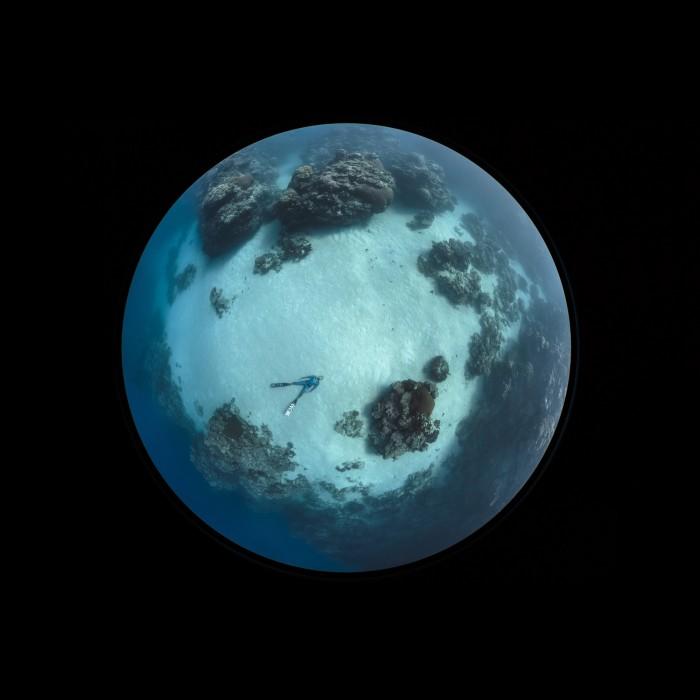 Ai Futaki: Lady Elliot Island © by Darren Jew